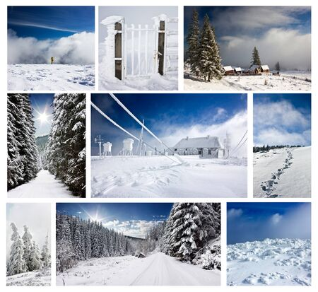 Winter collage Stock Photo - 11030698