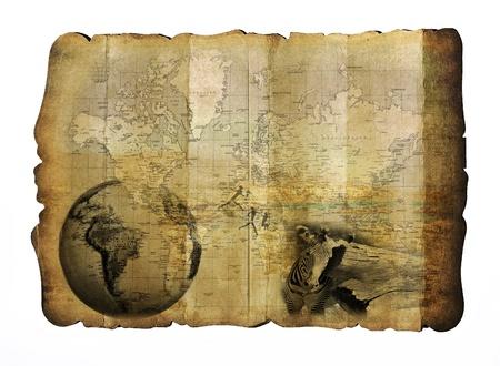 Jahrgang Safari Karte Standard-Bild