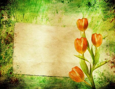 Grunge retro background with tulips and copy space         photo