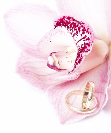 Pink orchid and wedding ring isolated on white