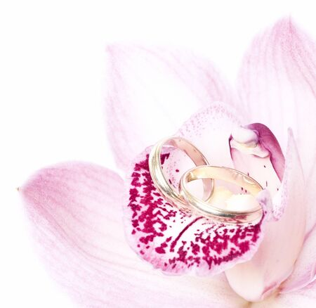 Pink orchid and wedding ring isolated on white  photo