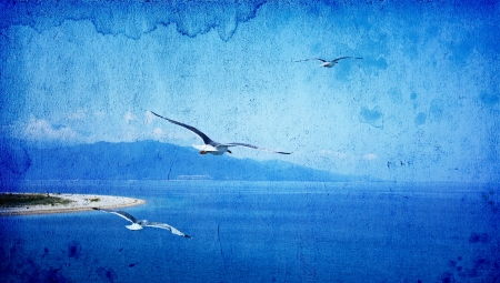 Vintage photo of summer sky, ocean and flying seagulls  photo