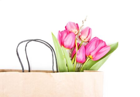 Beautiful pink tulips isolated on white photo