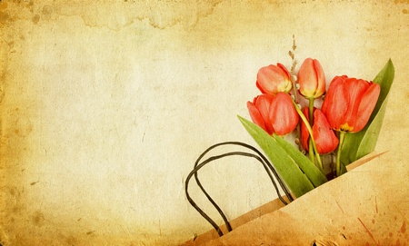 grungy isolated: Vintage tulips
