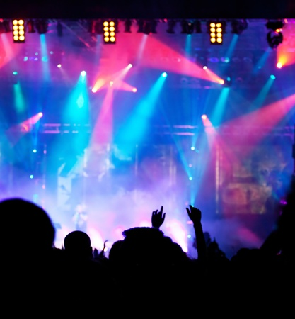 concert crowd: Crowd at concert