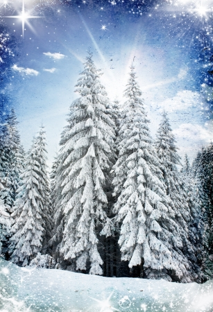 freeze: Christmas background with snowy fir trees