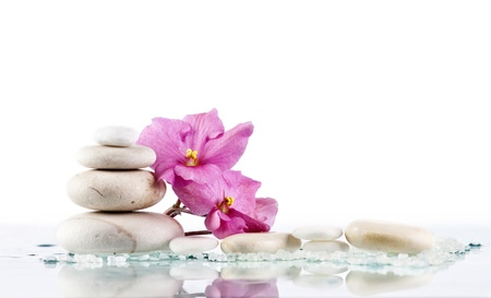 Spa stones and pink flower on white Stock Photo