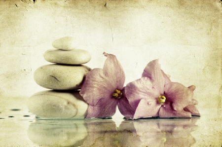 oriental massage: Vintage photo of spa stones and pink flower  Stock Photo