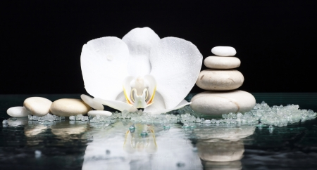 natural setting: Spa stones with orchid flower