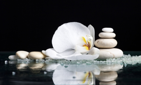Spa stones with orchid flower  photo