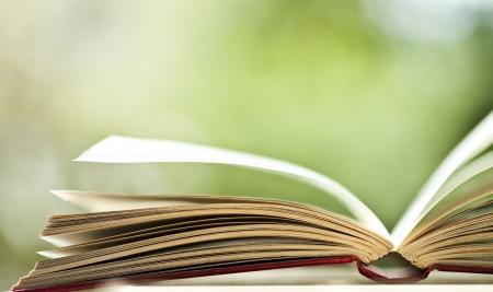 libro: Libro abierto