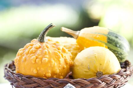 Autumn concept - pumpkins in basket and colorful autumn background Stock Photo