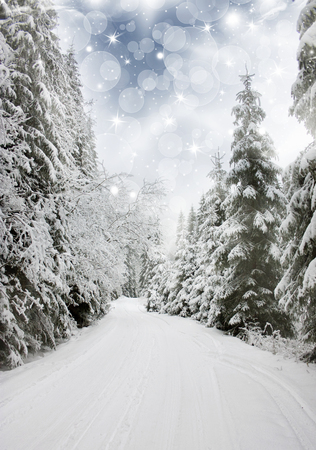fairytale background: Beautiful winter landskape with snow covered trees and blue sky