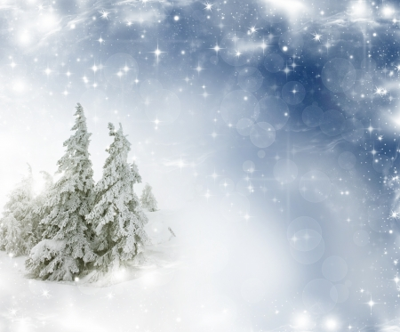 Christmas background with stars and snowy fir trees and snowflakes