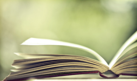開かれた本のページをクローズ アップ