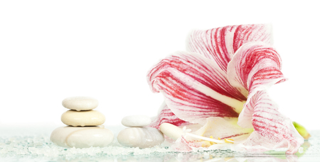 Spa stones and pink lilly flower on white background photo