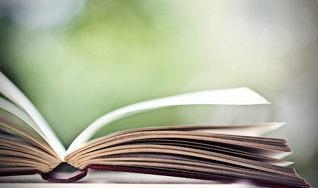 Close up on open book  photo
