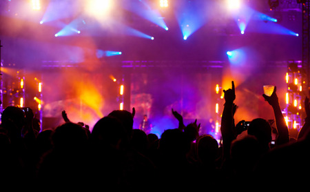 Cheering Crowd at concert photo