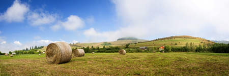 hayroll: Landscape of Hay-roll on field after harvest - panorama