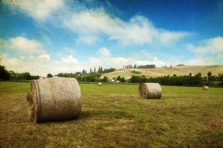 hayroll: Landscape of Hay-roll on field after harvest