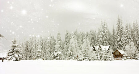 Winter landscape with snowy fir trees and mountain cottage photo