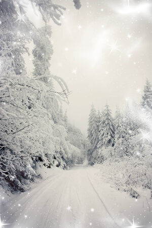 forest path: Christmas background with snowy path in the forest Stock Photo