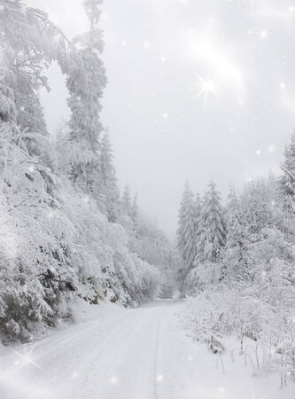 Christmas background with snowy path in the forest Stock Photo