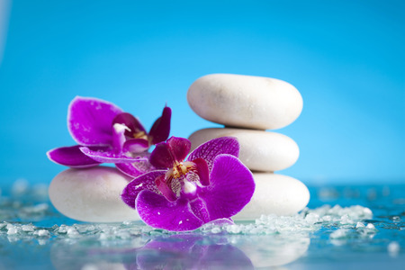 zen water: Spa still life with pink orchid and white zen stone