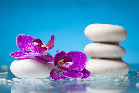 zen: Spa still life with pink orchid and white zen stone