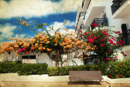 Vintage photo of a bench surrounded by flowers on a patio photo
