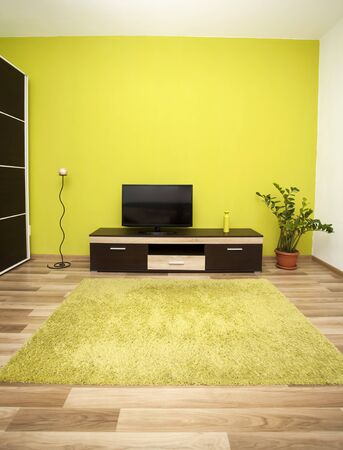 green carpet: Modern and simple living room interior