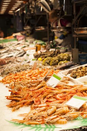 fisher animal: Fresh seafood at fish market