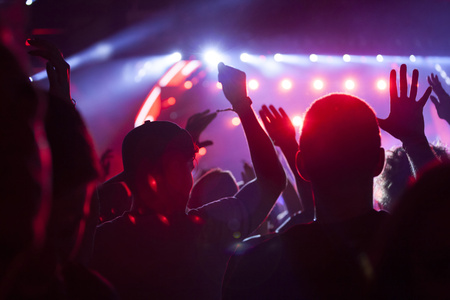 concert: Cheering crowd at a concert Stock Photo