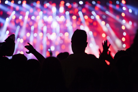 great: Cheering crowd at a concert Stock Photo