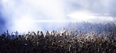 fans: Cheering crowd at a concert Stock Photo