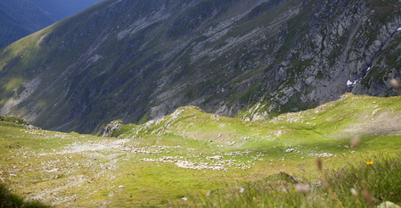 fagaras: Beautiful mountain landscape -Fagaras, Carpathian