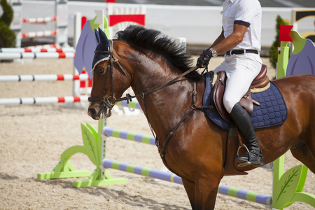 horseman: Horseman riding its purebreed horse at equestrian competition Stock Photo