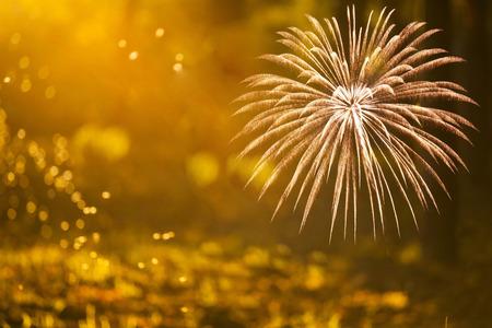 コピー スペース - 抽象的な休日背景、新年の花火 写真素材