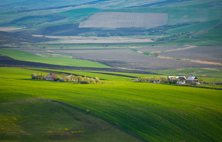 Endless lush pastures and farmlands with green fields and meadows.