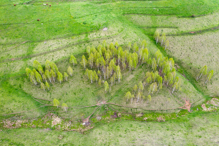 Top view or aerial shot of fresh green spring hills and meadows in the Apuseni Mounstains, Transilvania.