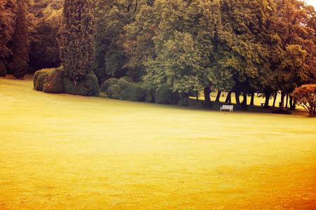 White bench in summer park