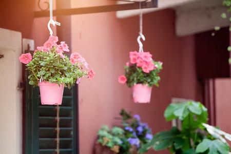 Hanging flower pots in a small italian village