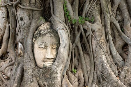 Ayutthaya Buddha Head statue with trapped in Bodhi Tree roots at Wat Maha That (Ayutthaya), Thailand Stock Photo