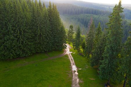 Aerial view of beautiful summer sunset over pine forest in the Transylvanian mountains.