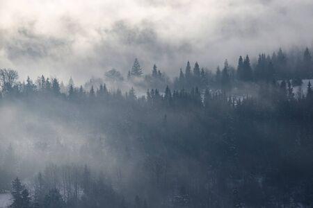 Fantastico paesaggio invernale con alberi innevati e nebbia nelle montagne dei Carpazi, Romania, Europa. Concetto di vacanza di Natale.