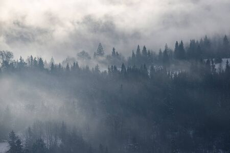 Fantastische Winterlandschaft mit verschneiten Bäumen und Nebel in den Karpaten, Rumänien, Europa. Weihnachtsferienkonzept.
