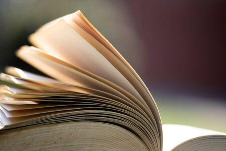 Offenes Buch unter Sonnenlicht im Freien. Bildungs- und Weisheitskonzept