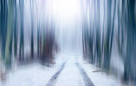 Forest fantasy landscape. Abstract motion blur of trees in a forest, road in focus.