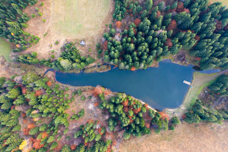 Small lake in autumn pine forest - aerial view. Standard-Bild