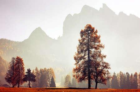 Small cottage in autumn Dolomite mountains. Standard-Bild
